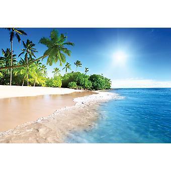 Caribbean Palm Beach