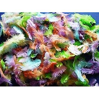 10g Mixed Pastel Colour Feathers for Crafts