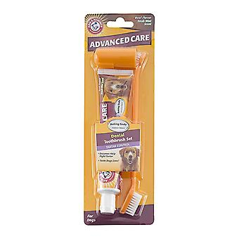 Arm & Hammer Tartar Control Beef Flavoured Dog Toothpaste and Brush Set