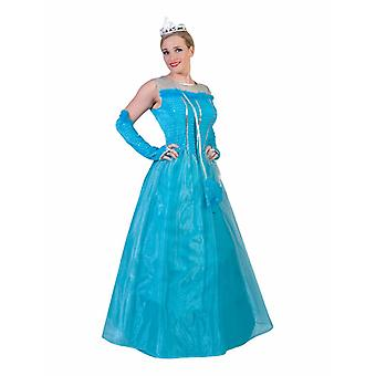 Princess Blue Costume Ladies Fairytale Dress Adult Carnival Women's Costume Lady Princess