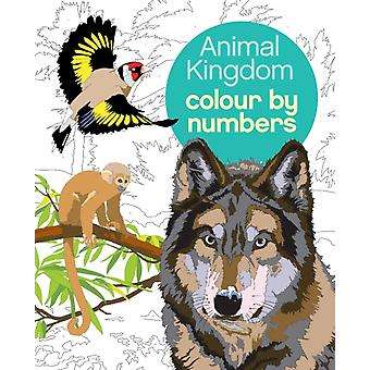 Animal Kingdom Colour by Numbers by Martin Sanders