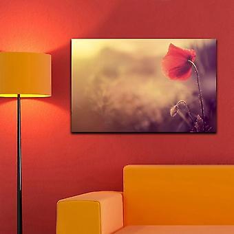 Quadro da Parete 45 Color Multicolore in Cotone, Legno 70x2x45 cm
