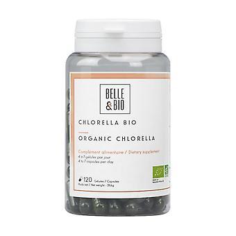 Chlorella Winzige Süßwasseralgen None