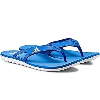 Adidas Herren Calo 5 Grafik Flip Flops - B40442