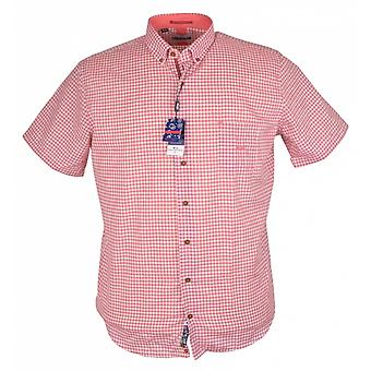 DARIO BELTRAN Dario Beltran Short Sleeve Check Shirt