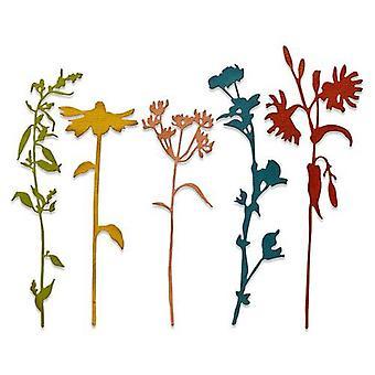 Sizzix Thinlits Die Set - 5pk Wildflower Stems #3 665221 Tim Holtz