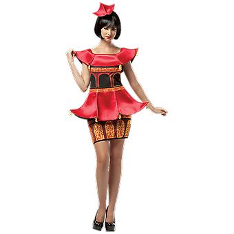 Womens Pagoda Dress China Japan History World Fancy Dress Costume