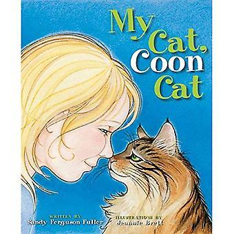 My Cat, Coon Cat