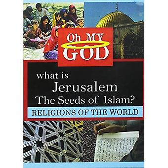 What Is Jerusalem - Seeds of Islam [DVD] USA import