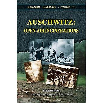 Auschwitz OpenAir Incinerations by Mattogno & Carlo