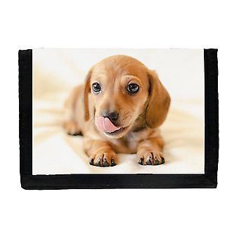 Dachshund Puppy Wallet