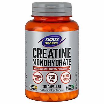 Nyt Elintarvikkeet Kreatiini Monohydrate, 750 mg, 120 Caps