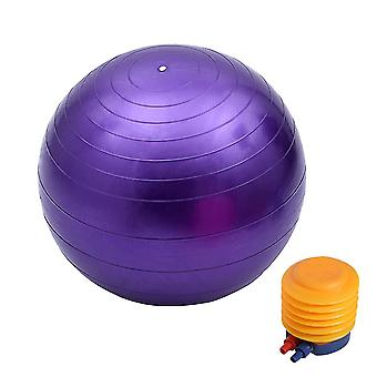 Frosted Exercise Balls With Pump+Air Pullout+Air Plug