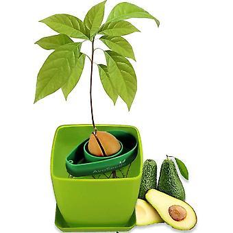AvoSeedo Grow Your Own Avocado - Unusual Gardening Gifts for Women | Avocado Tree Kit with Plant Pot