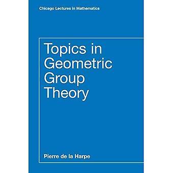 Emner i geometriske gruppeteori (Chicago forelesninger i matematikk)