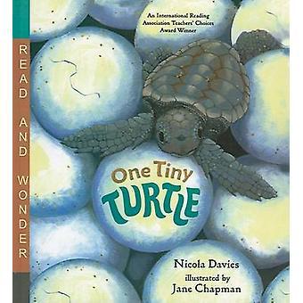 One Tiny Turtle by Nicola Davies - 9780756965624 Book
