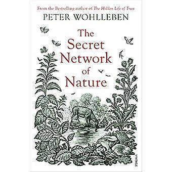 The Secret Network of Nature - The Delicate Balance of All Living Thin