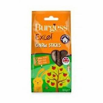 Burgess Excel Gnaw Sticks (Pack of 8)