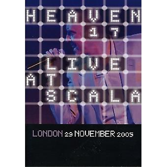 Heaven 17 - Live at Scala London [DVD] USA import