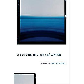 Een toekomstige geschiedenis van water