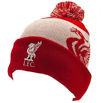 Liverpool FC Unisex Vuxen Quick Check Vinterhatt