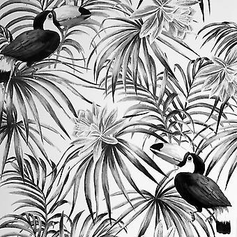 Toucan Tropikalne Tapety Mono Arthouse 298300