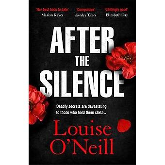 After the Silence The An Post Irish Crime Novel of the Year