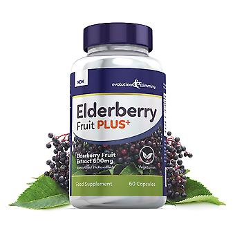 Elderberry Fruit Plus Elderberry Fruit Extract 600mg (5% Flavanoidi) - 180 Capsule - Evolution Slimming