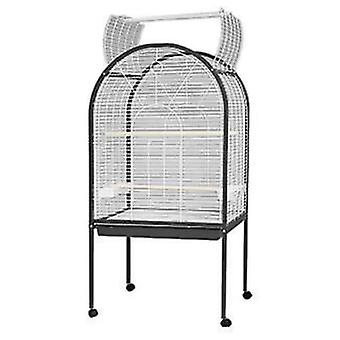 Arquivet Birdcage Foggia Old 80X61X157 (Birds , Cages and aviaries , Aviary)