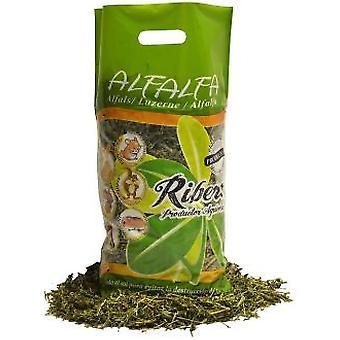 Ribero Alfalfa Hay (Small pets , Hay)
