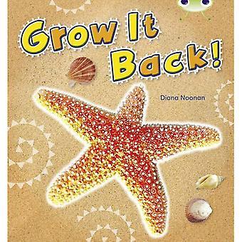 Grow it Back (Blue A) NF