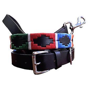 carlos diaz genuine leather  polo dog collar and lead set cdkupb051