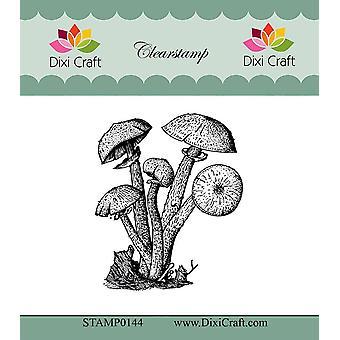 Dixi Craft Botaniska Samling 10 Clear Stamp