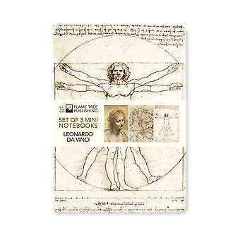 Leonardo da Vinci Mini Notebook Collection by Created by Flame Tree Studio