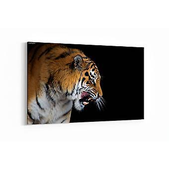 Schilderij - Beautiful tiger — 100x70cm