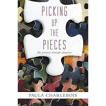 Picking Up the Pieces - My Journey Through Adoption by Paula Charleboi