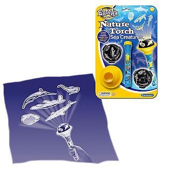 Creature del mare di Eureka giocattoli natura torcia