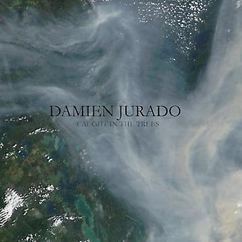 Damien Jurado - Caught in the Trees [CD] USA import