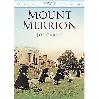 Mount Merrion in oude foto 's