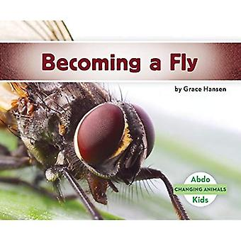 Becoming a Fly (Changing Animals)