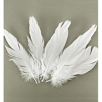 Feathers, Pure White, 15pcs