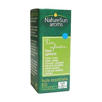 Organic Scots Pine essential oil 10 ml of essential oil
