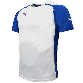 Puma Miesten Speed Jersey Training Kuntosali Urheilu T-paita Valkoinen 701906 13