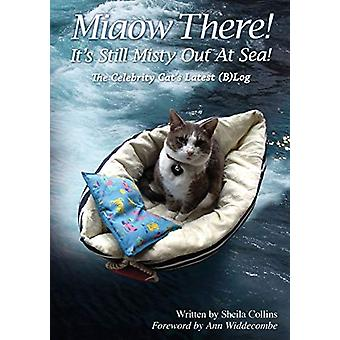 Miaow There! It's Still Misty Out at Sea! - The Celebrity Cat's Latest