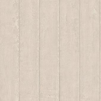 Rasch Portfolio Wallpaper 220834