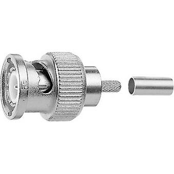 Telegärtner J01002F1261z BNC connector Plug, straight 75 Ω 1 pc(s)