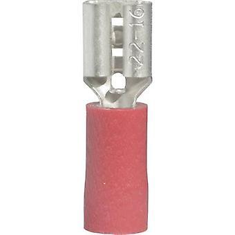 Vogt Verbindungstechnik 3902S Klinge Buchse Stecker Breite: 4,8 mm Stecker Stärke: 0,8 mm 180° teilweise isoliert Rot 1 PC
