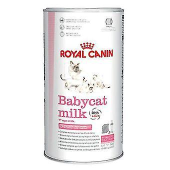 Royal Canin Babycat melk (katter, kattemat, våt næringen)