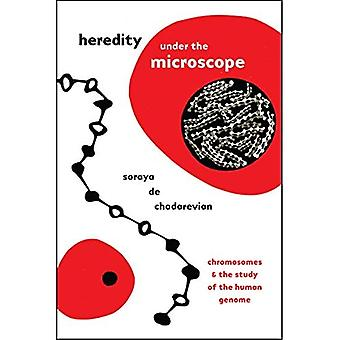 Heredity under the Microscope: Chromosomes and the Study of the Human Genome