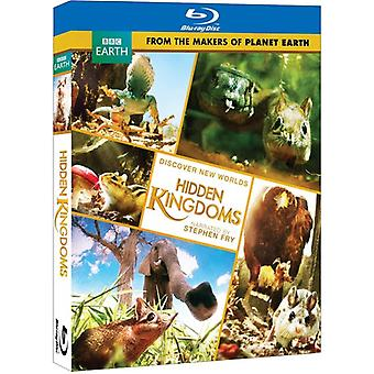 Hidden Kingdom [BLU-RAY] USA import